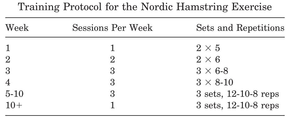 Nordic hamstring - Protokoll